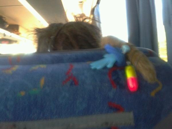 La gente que pone el pelo por encima del asiento.