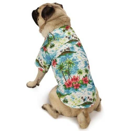 """Promising review: """"Our basset was invited to a Luau party, so we found this styling Hawaiian shirt for him. We got the XL and the fit was good. The sleeves were a little long, (but that is a standard problem for bassets). The material is quality, sturdy fabric, (which was a pleasant surprise for dog clothes). The shirt fastens with Velcro."""" —S. H. WellsPrice: $15.92+ / Rating: 4/5 / Sizes: XXS-S/M, L-XL"""