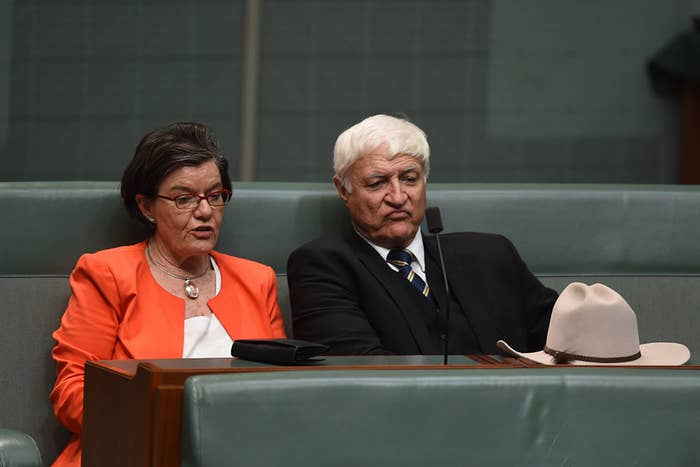 Independent MPs Cathy McGowan and Bob Katter vote with the government in support of the plebiscite.