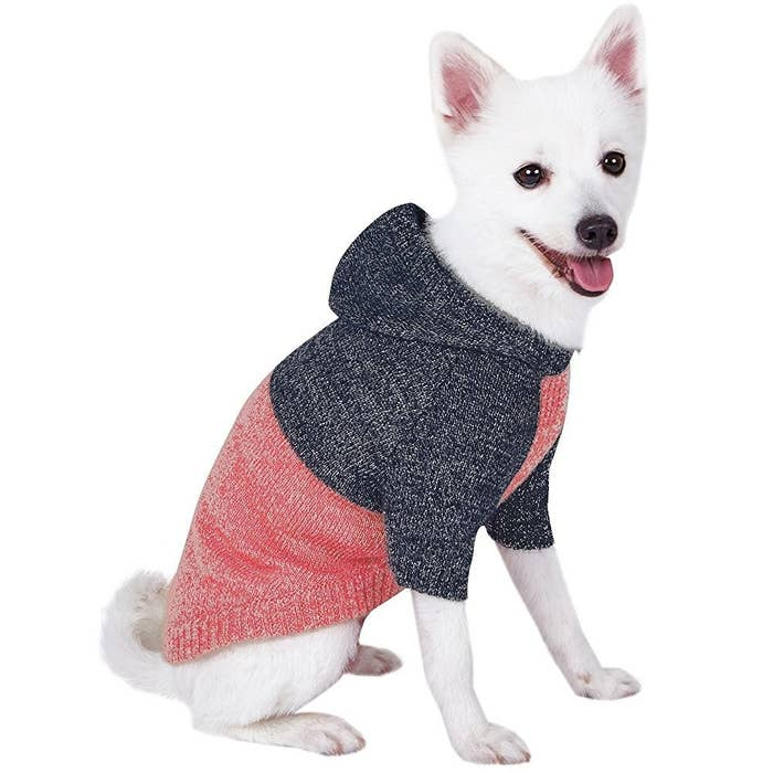 611ef8cbb857d 28 Of The Best Pieces Of Clothing For Dogs On Amazon