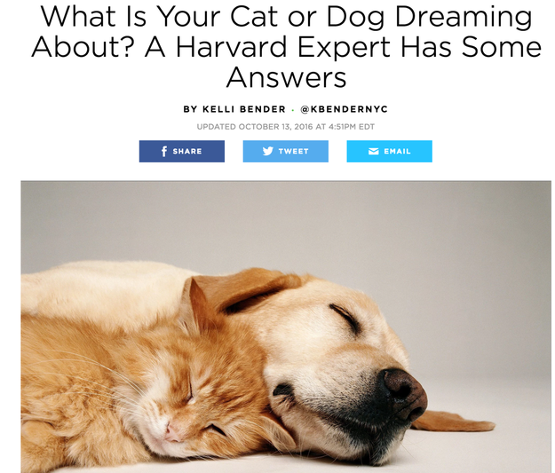 """One week ago, People published a Q&A with """"a Harvard expert"""" explaining how the dreaming habits of pets differ from humans."""
