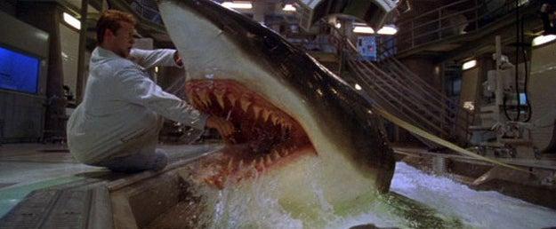 The murdery shark in Deep Blue Sea