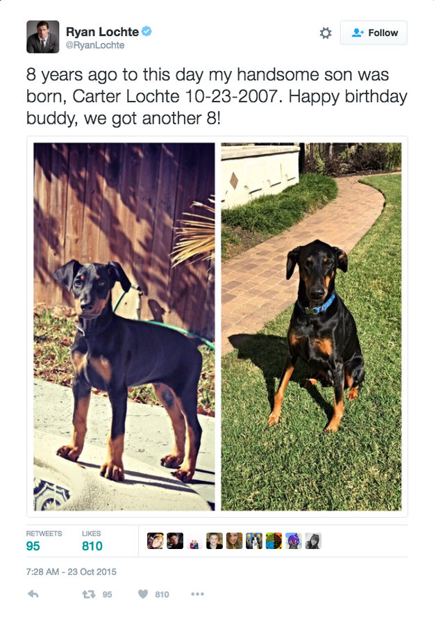 """In this tweet from 2015, Carter is pictured as a puppy (on the left) in 2007 when he was born """"8 years ago to this day."""""""