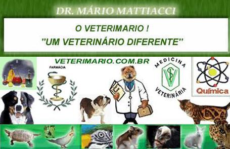 Apenas um brasileiro chamado Mário pode ter um consultório conhecido como Veterimário.