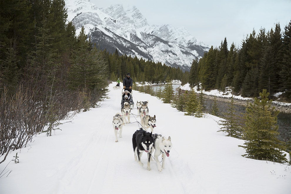 Dogsledding in the Canadian Rockies is the perfect way to relax and take in the scenic landscape.