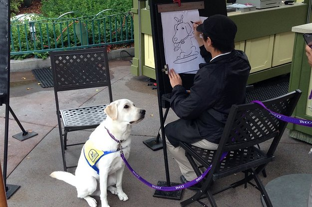 A Service Dog Got His Caricature Drawn At Disneyland And People Can