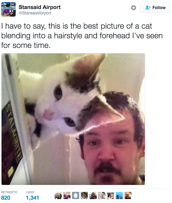 21 Pictures That Will Make You So Goddamn Grateful For The Internet