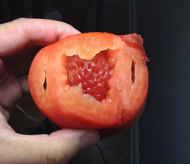 This tomato that's growing a strawberry inside its belly.