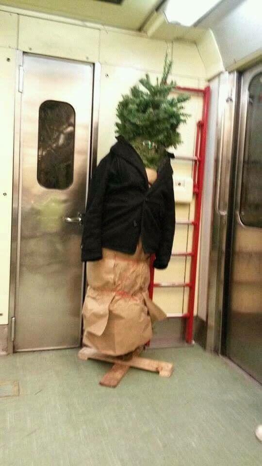 El mismo día, un hombre en el Metro se convirtió en árbol.