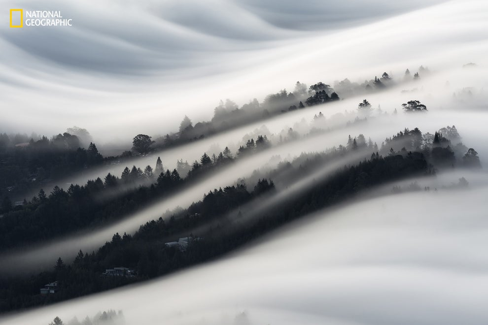 Beautiful waves of fog in Mill Valley, California.