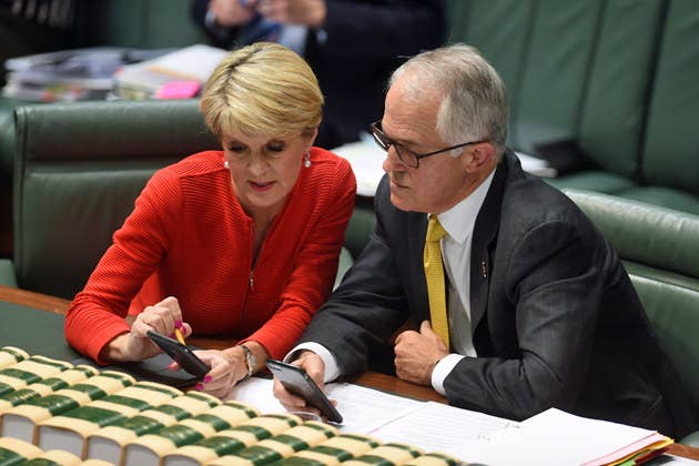 "Turnbull, gazing at his iPhone alongside foreign minister Julie Bishop in parliament on Wednesday, looked exasperated as he scrolled through the results.Christensen said the government must heed the warning call from Trump's election, as well as from Brexit earlier this year, and claimed that conservatism should be ""less caught up in free market ideology"".""People are wanting solutions to problems that politicians simply shrug their shoulders about: Petrol prices, power prices, foreign ownership, radical Islam, boarder security."""
