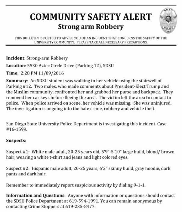 100 5 Sample Police Report Incident Report Police 6