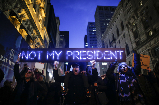 Image result for trump protest movement
