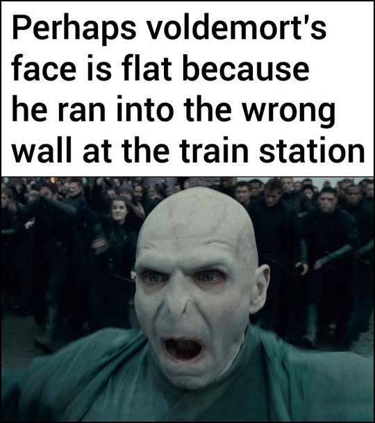 sub buzz 18393 1479130771 2?downsize=715 *&output format=auto&output quality=auto 17 harry potter memes that are so dumb they're great