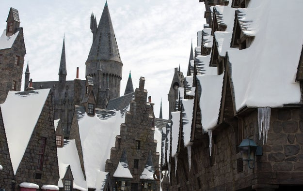 Earlier this year, Universal Studios Hollywood opened the Wizarding World of Harry Potter, bringing J.K. Rowling's magic to Southern California!