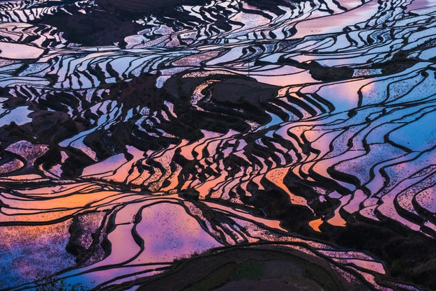 19 Photos Of Rice Terraces Guaranteed To Take Your Breath Away