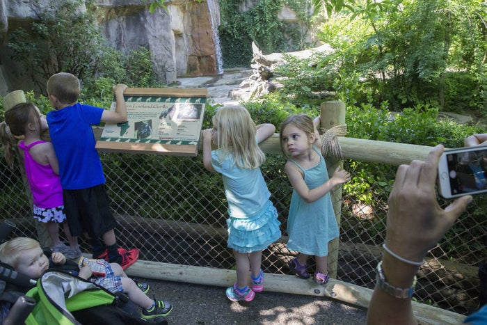 Children play on the Cincinnati Zoo's new fence.