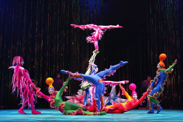 You've probably heard of Cirque du Soleil, the worldwide phenomenon.