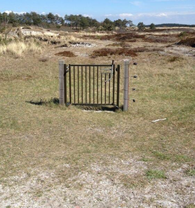 Or this fence: