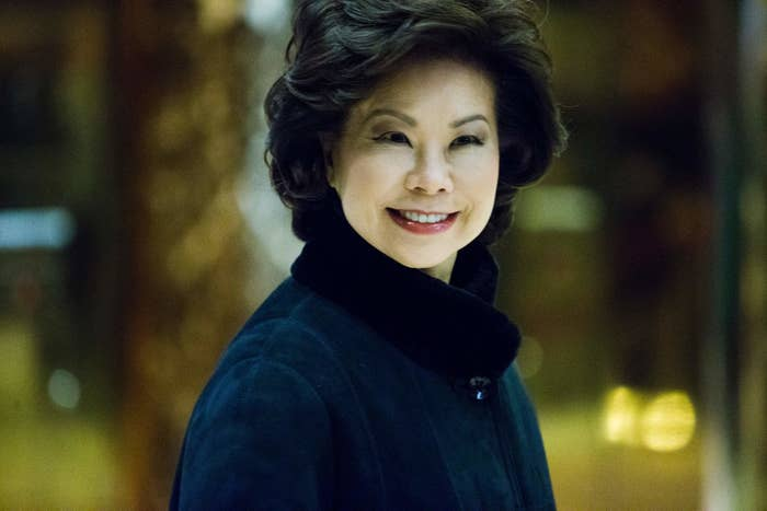Former US Secretary of Labor Elaine Chao arrives at Trump Tower on a day of meetings scheduled with President-elect Donald Trump on Nov. 21 in New York.