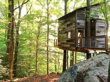 25 Amazing And Affordable Treehouses You'll Want To Rent For