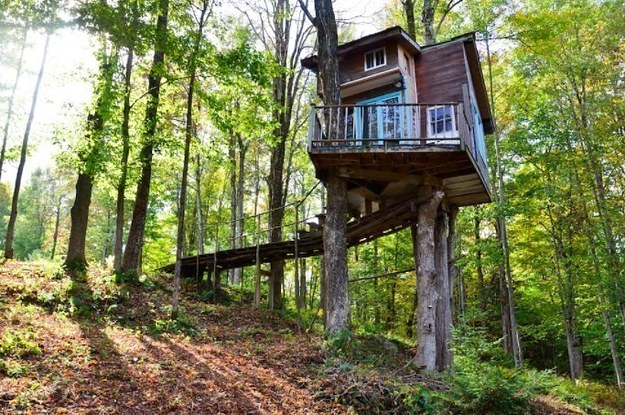25 Amazing And Affordable Treehouses You Ll Want To Rent