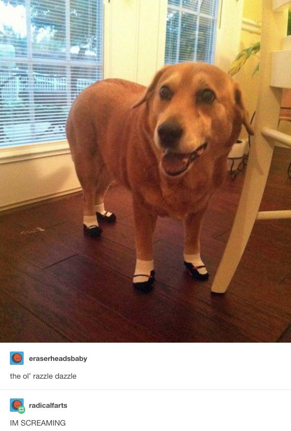 A cipő: