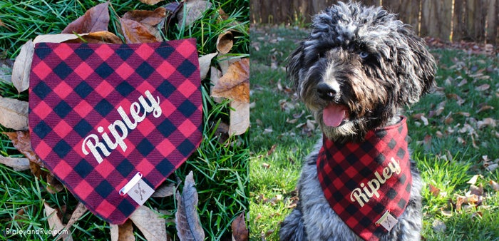 Dog owners dig (pun intended) custom accessories and apparel for their dogs. Upon opening the box, they'll immediately scream with glee, throw this on their dog, and demand an Instagram photoshoot to show their dog's followers the new garb. Yes, their dog has their own Instagram account. Choose from a variety of personalized bandana designs and sizes at RipleyandRue.com. $27.99