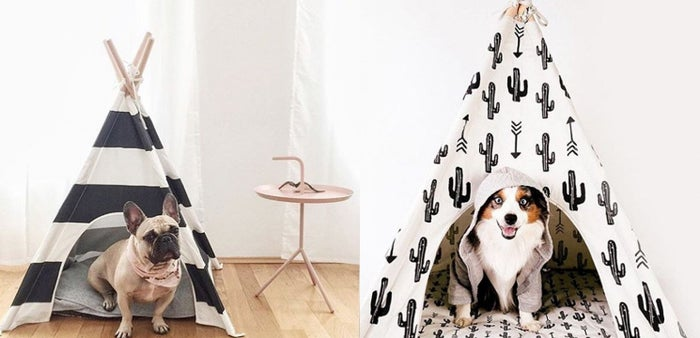Dog beds are so last year. Any dog lover will think this is the cutest thing they've ever seen and start plotting out where they will fit this in their living room. Cactus Dog Teepee by Pipolli $85.