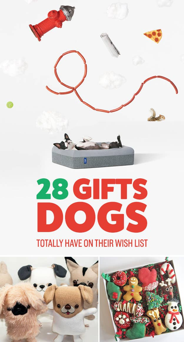 28 amazing gifts your dog will love