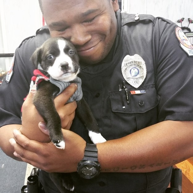 This is Florida police officer Marcus Montgomery, and his pup Kylo. He met Kylo when he was making a routine call to a local animal shelter and couldn't resist adopting him.