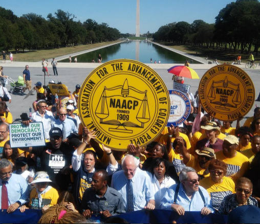 If you're worried about racial inequality and discrimination, you can support the National Association for the Advancement of Colored People (NAACP).