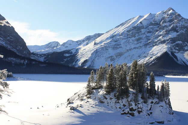 Alberta's mountain parks are a gorgeous winter wonderland this time of year. But there is also a scourge upon these pristine lands.