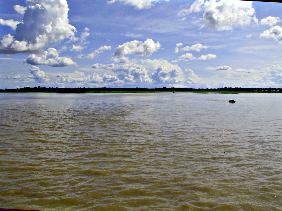 Manaus (AM).