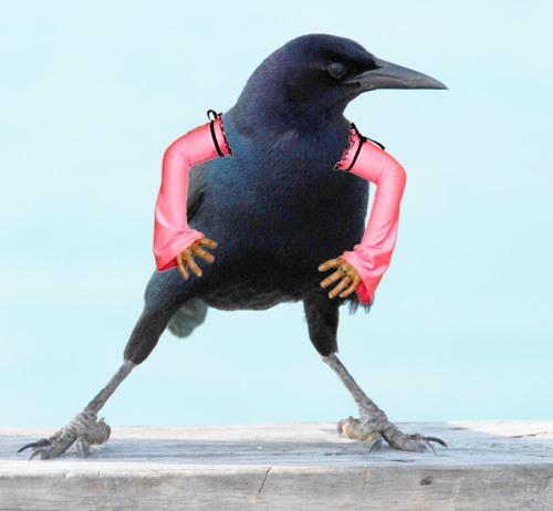 Cría cuervos y te darán lecciones de estilo.