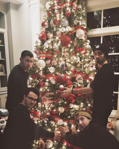 The Jonas Brothers reunited for the holidays.