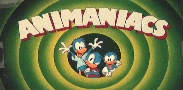 Inicialmente, Animaniacs fue concebida como una serie sobre cuatro patos llamados Yakki, Smakki, Wakki y Dot.
