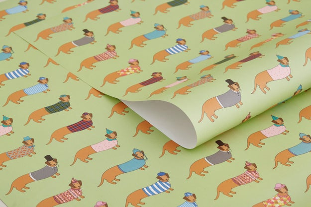 Dapper dachsund paper that's definitely not hiding a boxed sweater. No siree.
