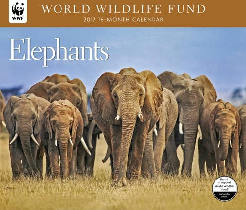 A Beautiful World Wildlife Fund Elephant Calendar That Will Teach You New Facts Each Month