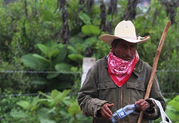 Y aún cuando en México, existen alrededor de 15.7 millones de personas que se consideran indígenas...