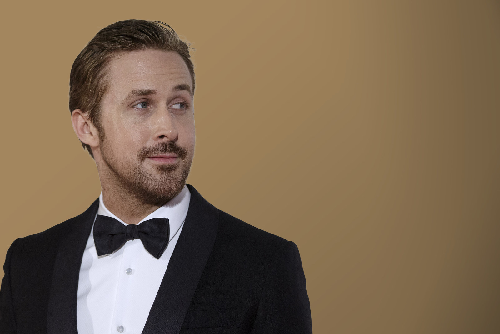 Great Job Funny Meme Ryan Gosling : Search results for ryan gosling ecards from free and funny cards