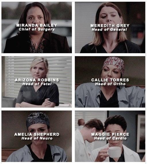 Bailey, Callie und Maggie sind Women of Color, Arizona ist lesbisch, Callie bisexuell. Meredith ist alleinerziehende Mutter, Amelia eine (cleane) Süchtige.