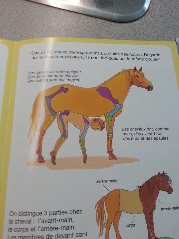 Ce livre pour enfants à tenir hors de portée des enfants.