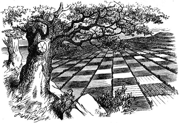 The steps taken by Alice in Alice: Through the Looking Glass make up a playable game of chess (though not necessarily an efficient one).