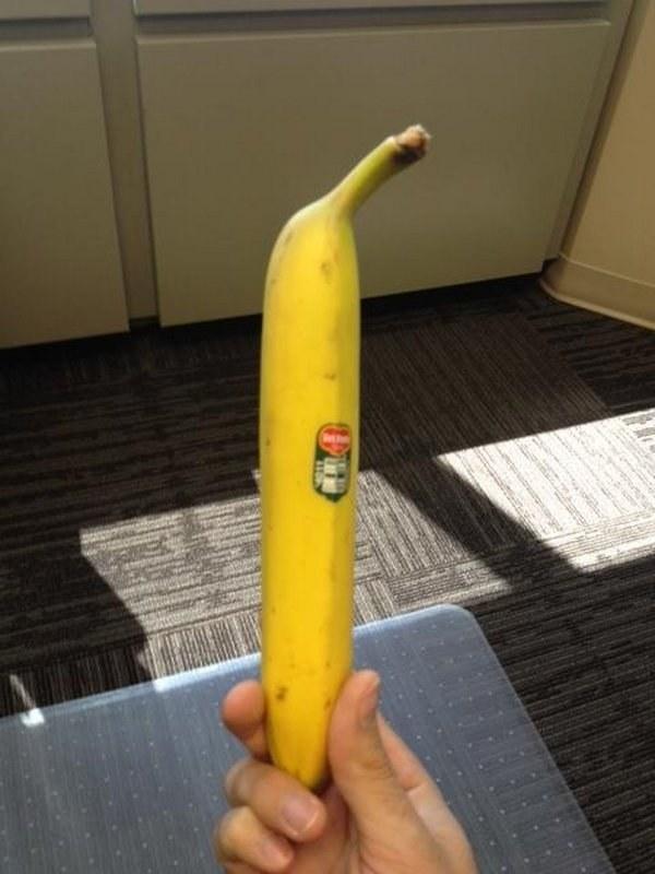 Esta banana que salió demasiado recta: