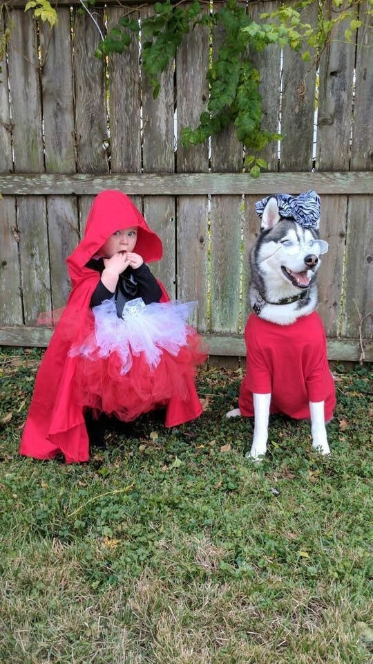 They'll play dress-up with you when you want to go trick-or-treating.