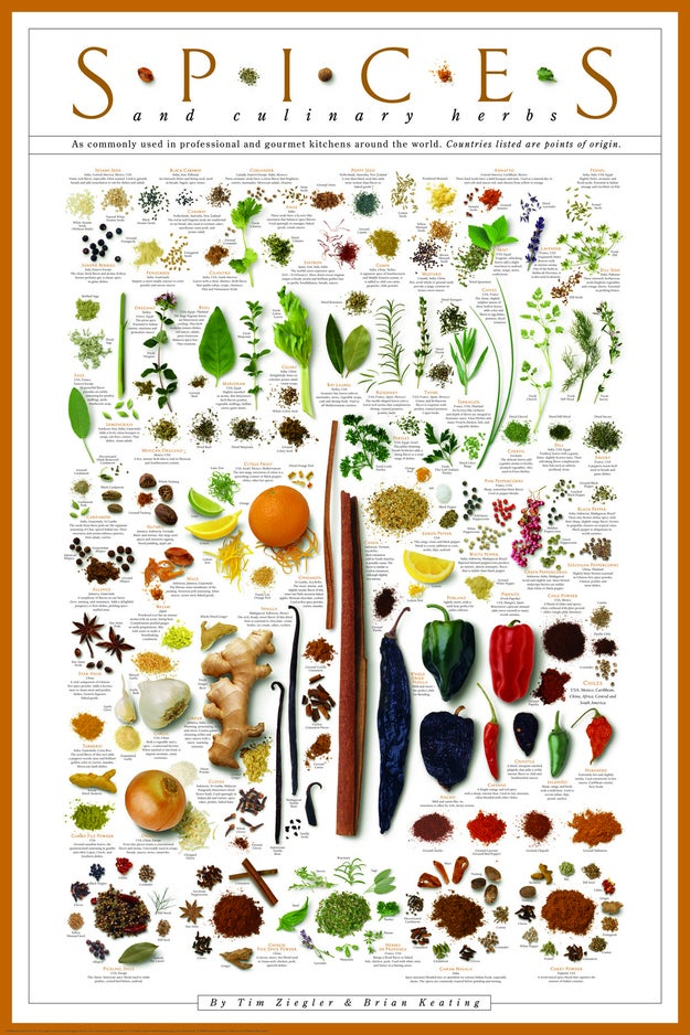 A beautifully informative print that identifies and describes herbs and spices so you can kick your food up a notch when it comes to flavor.