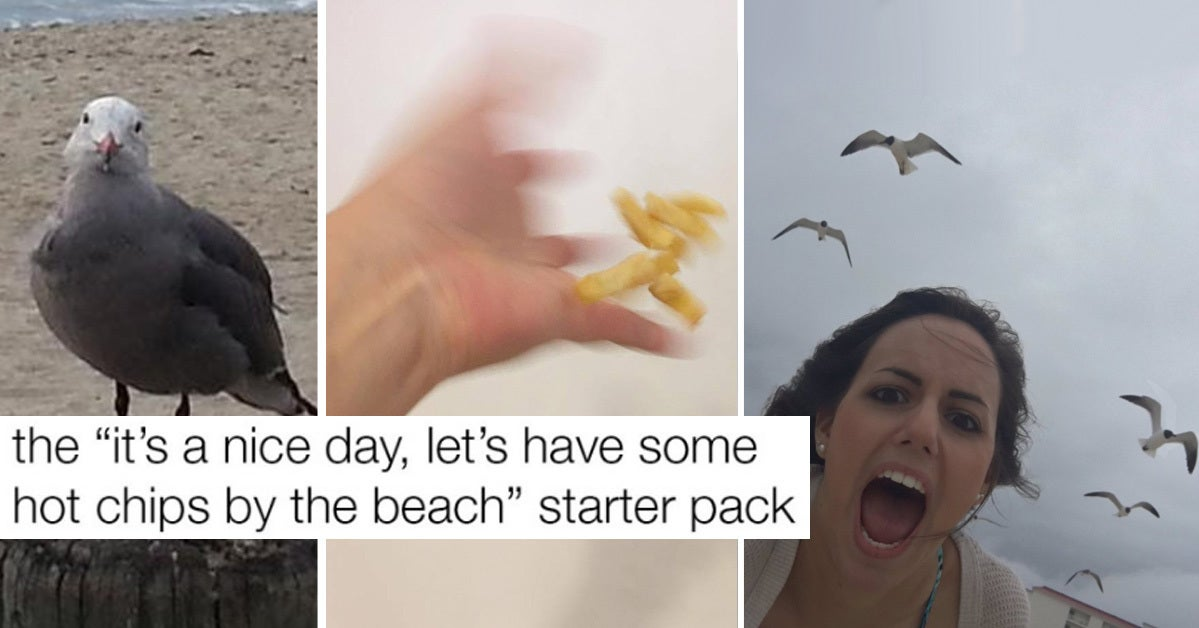9 Aussie Summer Starter Packs That Are Just Too Real