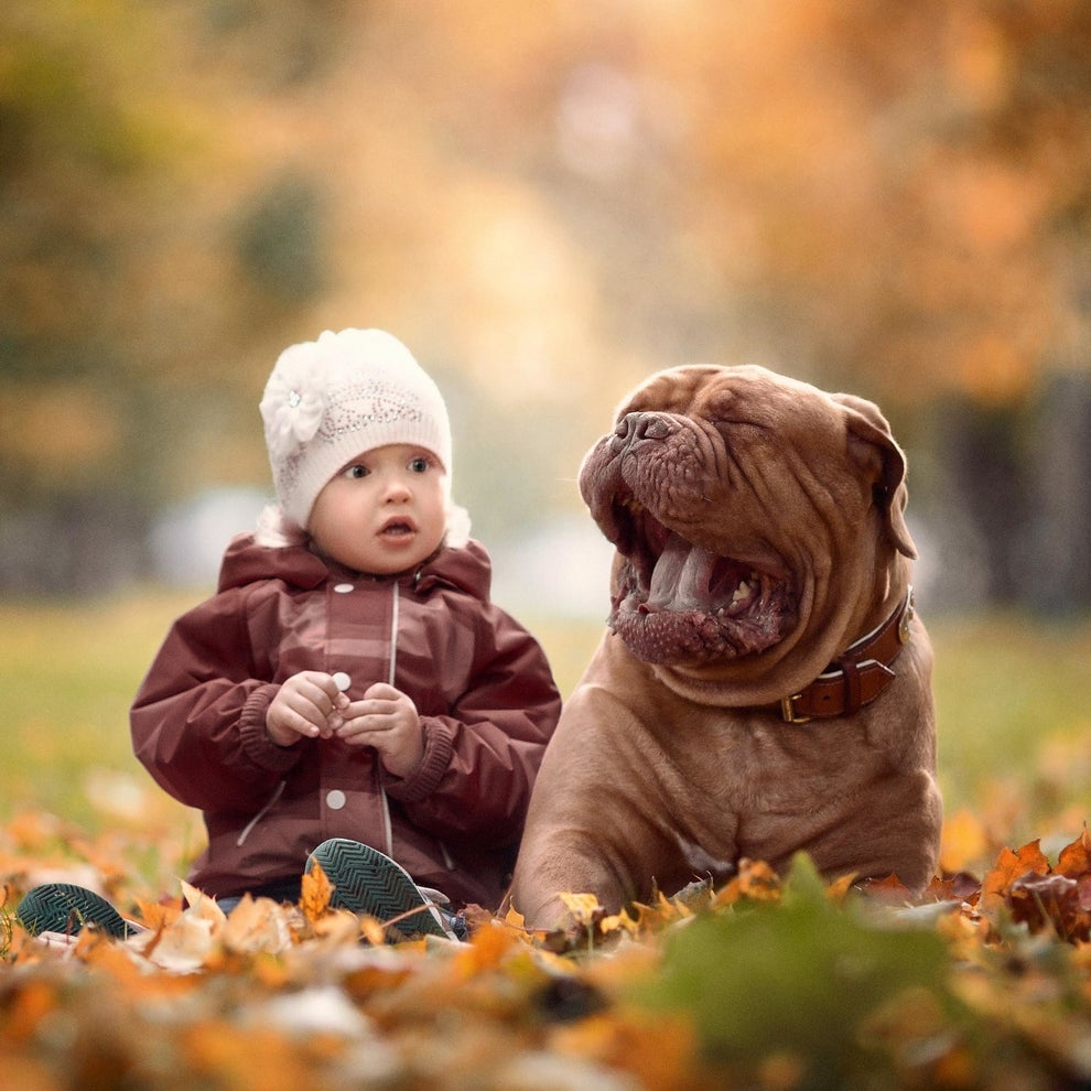 The                                                          photos depict                                                          the                                                          interactions                                                          between cute                                                          kids and                                                          these very                                                          gentle                                                          giants.