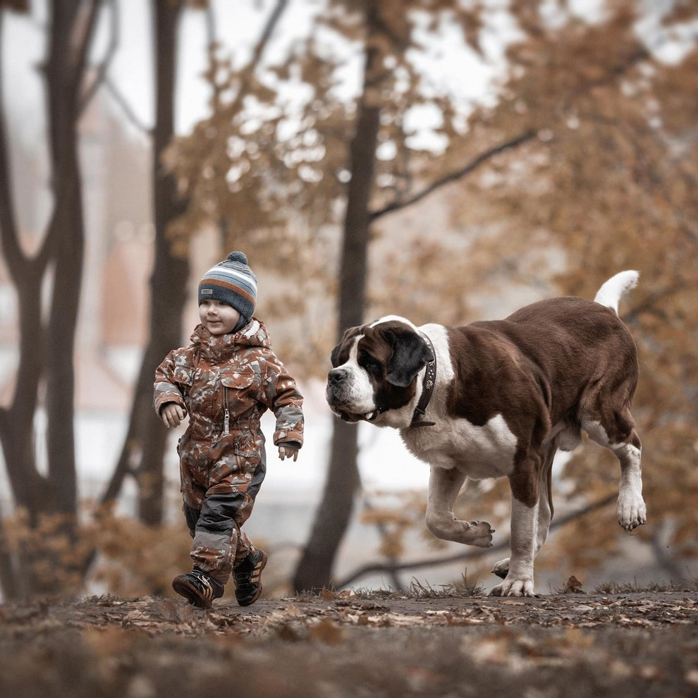 He also tries to ensure that the photos are taken where the dogs commonly walk and play with the children so they are as natural as possible.